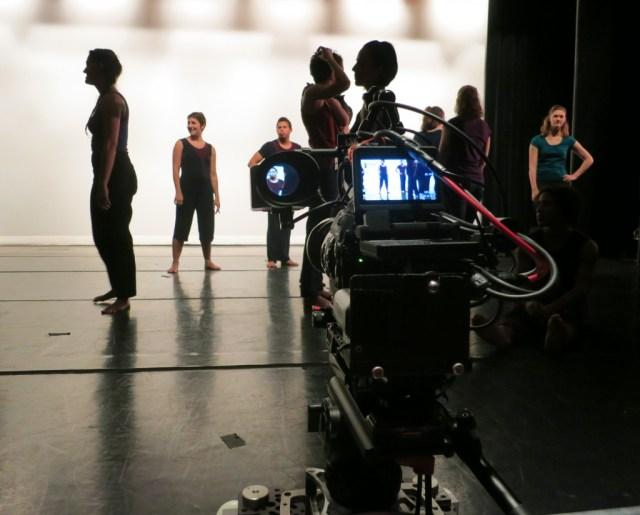 Into Sunlight  Robin Becker Dance