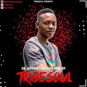 TribeSoul – 3K Appreciation Mix Hiphopza Mposa.co .za  300x300 - TribeSoul – 3K Appreciation Mix