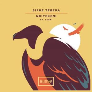 Toshi Mposa.co .za  300x300 - Siphe Tebeka – Ndiyekeni (Mozaik Remix) ft. Toshi