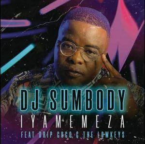 DJ Sumbody Iyamemeza Mposa.co .za  300x297 - DJ Sumbody – Iyamemeza ft. Drip Gogo & The Lowkeys