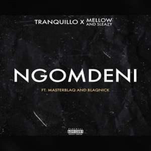 Tranq Mposa.co .za  300x300 - Tranquillo, Mellow & Sleazy – Ngomdeni ft. MasterblaQ & Blaqnick