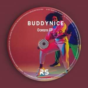 Buddynice Mposa.co .za  300x300 - Buddynice – Idlozi Lam (Original Mix)