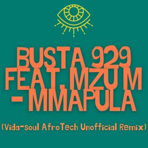 Busta 929 ft. Mzu M – Mmapula Vida soul AfroTech Unofficial Remix mp3 download zamusic 768x768 Mposa.co .za  300x300 - Busta 929 – Mmapula (Vida-soul AfroTech Unofficial Remix) ft. Mzu M