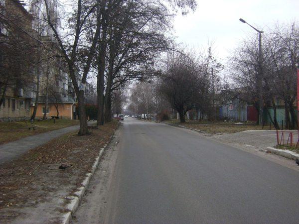 heroyiv_upa_street-_brovary