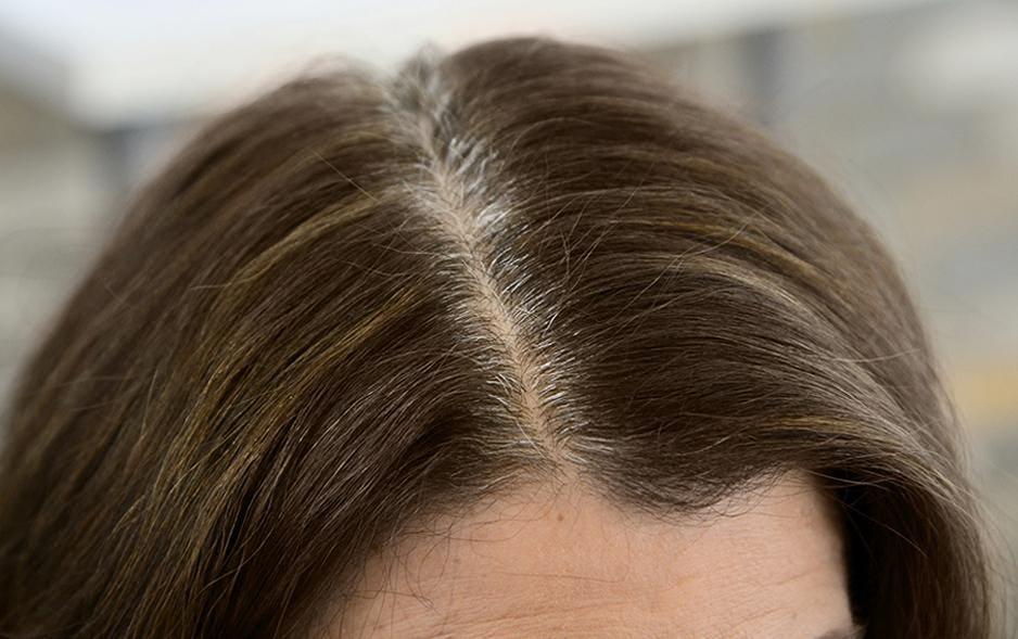 Highlight Gray Hair Color Chart Homeschoolingforfree