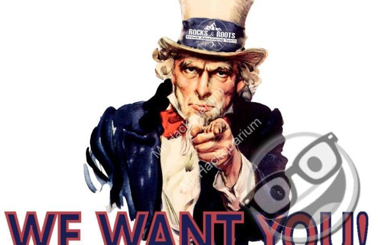R&R Academy : We Want You