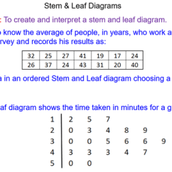 How Do You A Stem And Leaf Diagram Cisco Ucs Diagrams Untitled 1 14 Png