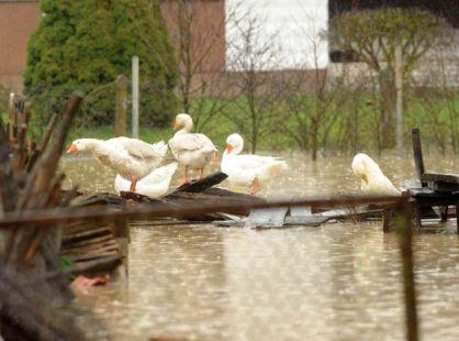 Mraclin, 12.02.2014 - Unatoc naporima vatrogasaca voda je jutros prodrijela u dio kuca