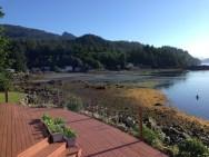 Very low tide