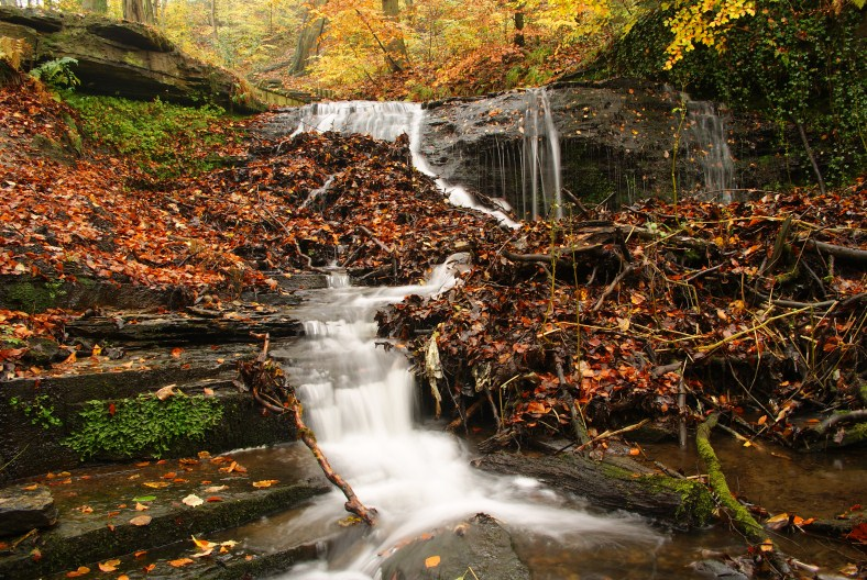 Waterfall - shelf 12