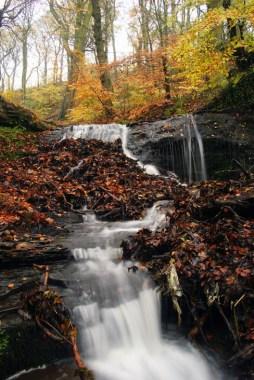 Waterfall - shelf 2