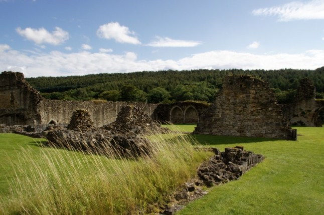 Kirkham Priory 9