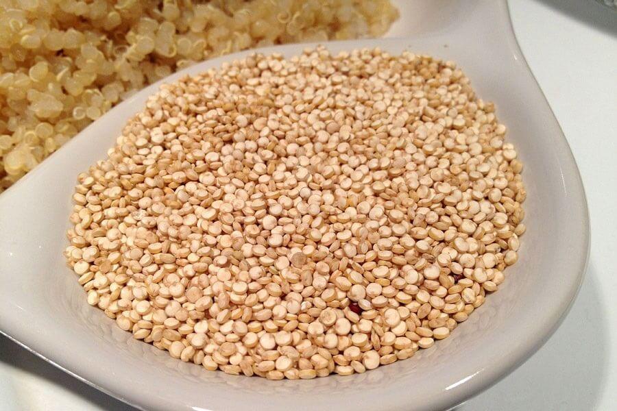 quinoa-graine-cereale-legume