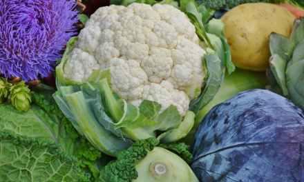 5 aliments santé d'automne à ne pas manquer