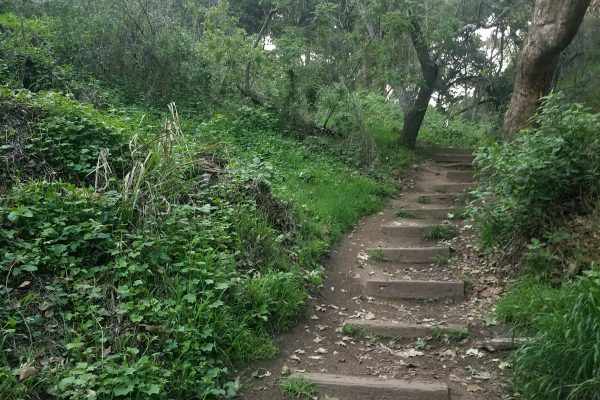 Judy Perez Soto_FC trail stair