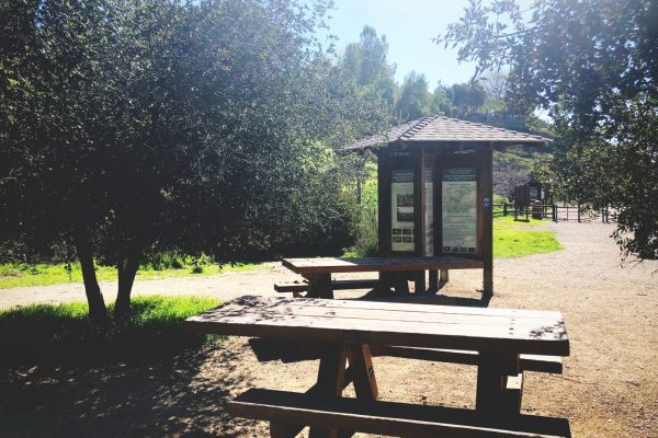 Picnic tables are located at the Victory Trailhead. Photo by Leigh Tran.