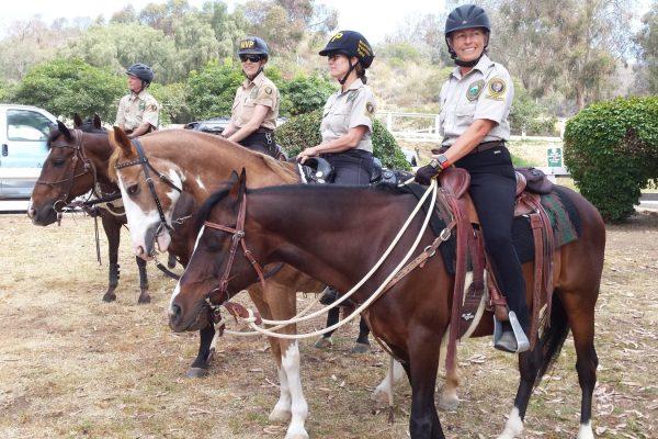 Mounted Volunteer Patrol