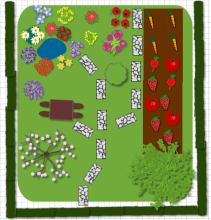 garden dysign