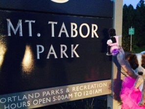 """Melody from """"Out of My Mind"""" visits Mt. Tabor Park"""