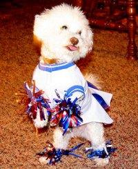 cheerleader | Mrcostumes's Blog