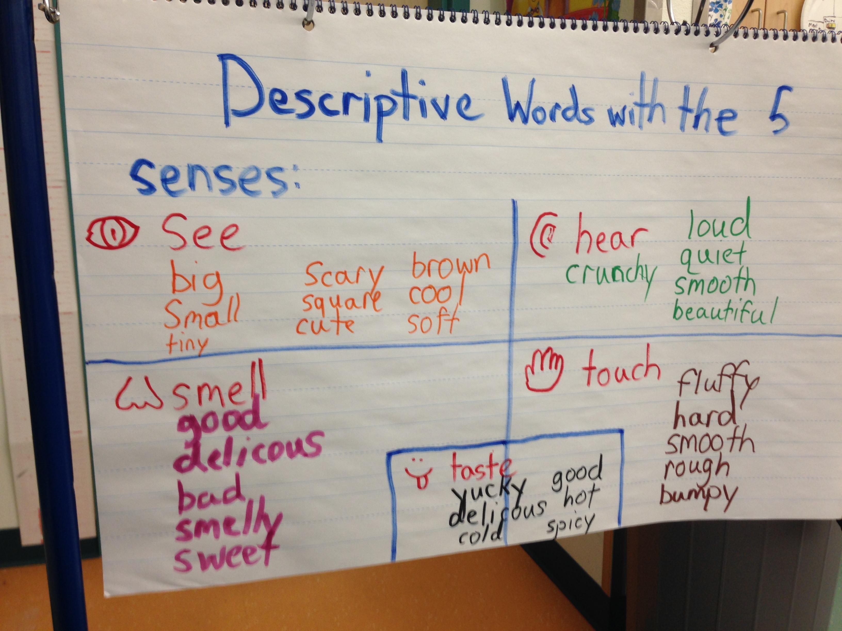 Describing Words Using The 5 Senses
