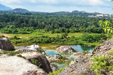Hidden Gem: Breathtaking Frog Hill/Guar Petai at Tasek Gelugor, Penang