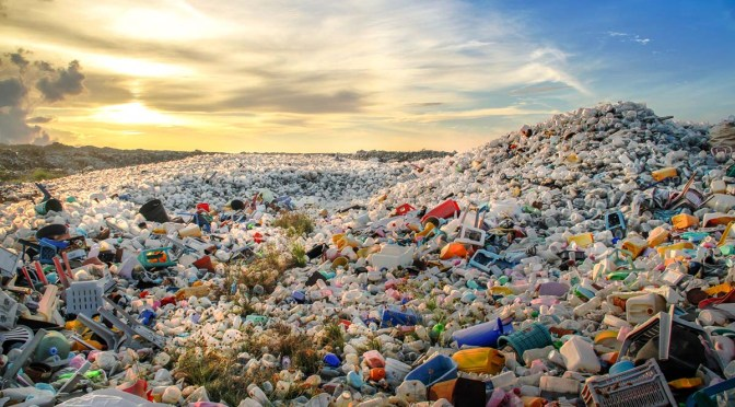Single-Use Plastic Ban at Government Events: Sort out Practical Implications