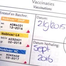 intake, vaccinaties en hondenpaspoort