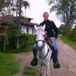 Auf einem weißen kolumbianischen Pferd in Salento, Kolumbien