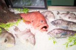 Mr Fish Seafood Market