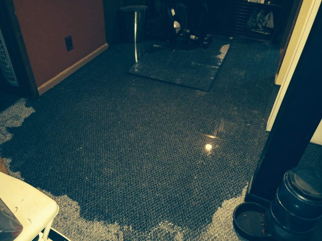Prevent Water In Your Basement Tips To Stop Leaks And