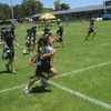 2014 Western Force 040 (Small)