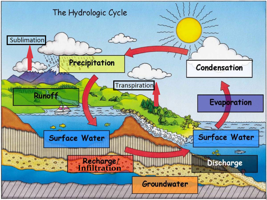 U6 S1 B1 Water Cycle