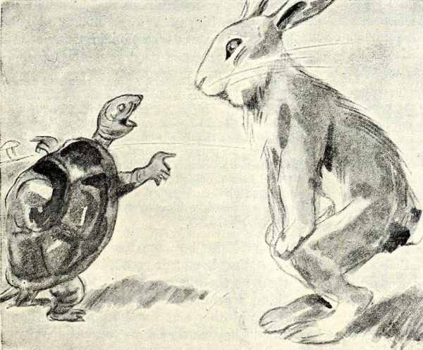 Tortoise and Hare Money Lessons