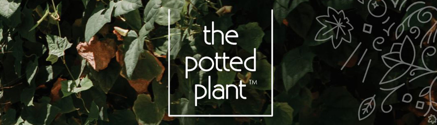 The Potted Plant Hemp Body Wash and Lotion logo banner slide
