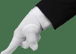 white-gloves-site-banner