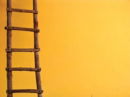 3 Essential Tips to Keep in Mind as You Climb the Ladder Of Success mrkoachman