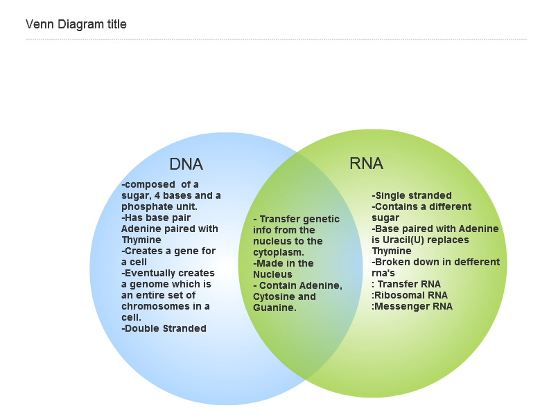 Difference Between Dna And Rna Venn Diagram Roho4senses