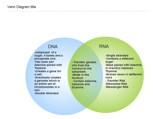 Difference Between Dna And Rna Venn Diagram Periodic Diagrams