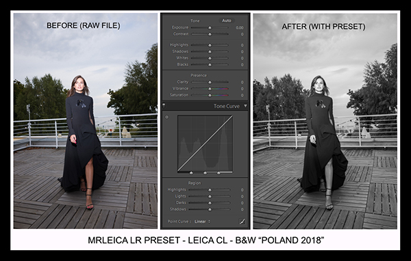 Leica Lightroom Presets - B&W