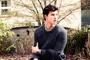Shawn Mendes 第三張同名專輯歌曲故事介紹+音樂分析! 6