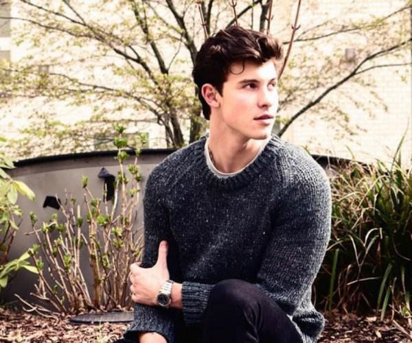 Shawn Mendes 第三張同名專輯歌曲故事介紹+音樂分析! 8