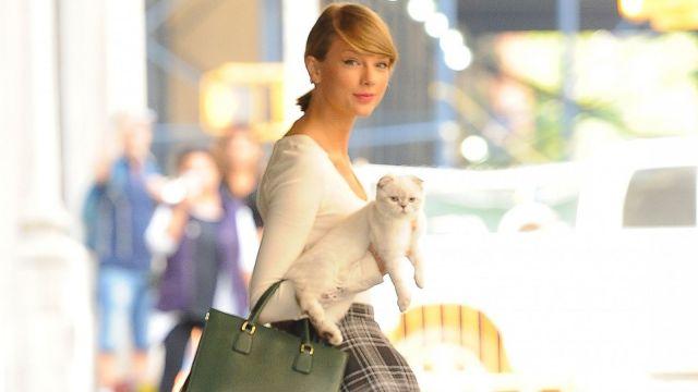 Taylor Swift ME! 彩蛋大公開,從 Reputation 寶座走下,與 Joe Alwyn 訂婚!? 4