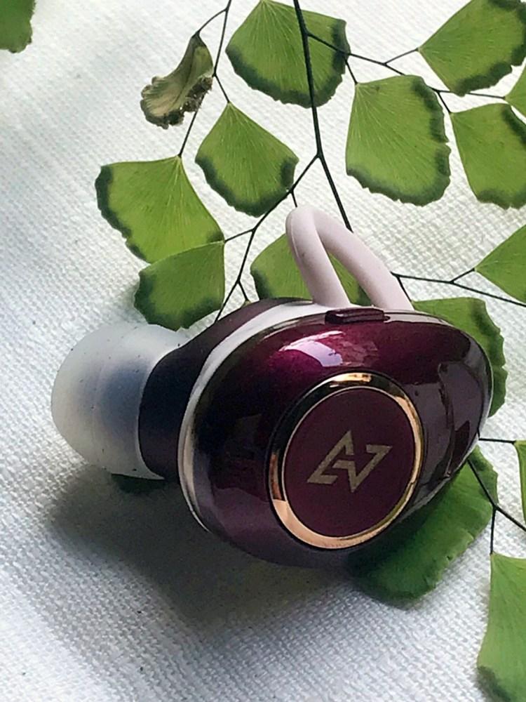 AVIOT TE-D01d mk2,日本音樂首選調音耳機 12