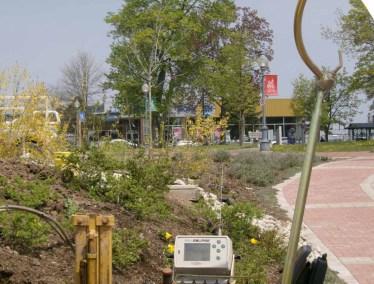 City of Moncton - Boar Park Downtown 009