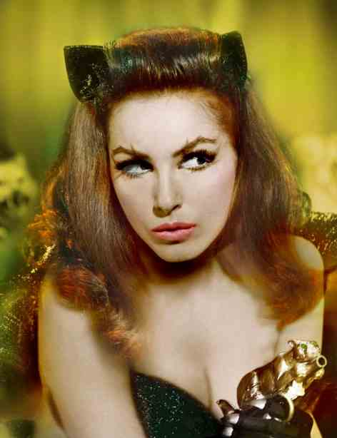 Julie Newmar played Catwoman in the 1960s Batman TV series