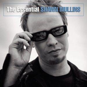 The Essential Shawn Mullins, Mr. Media Interviews