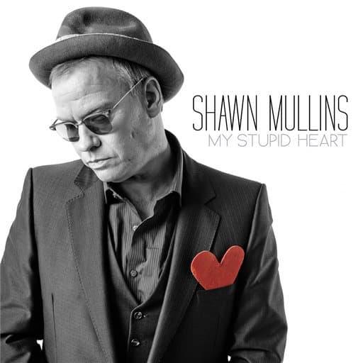 My Stupid Heart by Shawn Mullins, Mr. Media Interviews