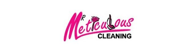 Mr. Meticulous