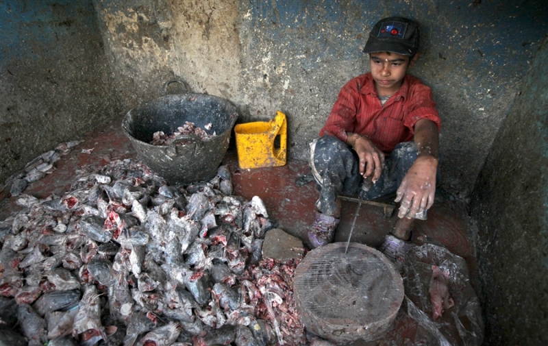 10341120-millions-pushed-into-child-labor-in-pakistan